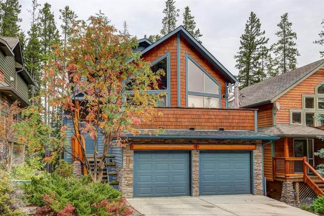 996 Wilson Way, Canmore, AB T1W 3C4 (#A1156087) :: Canmore & Banff