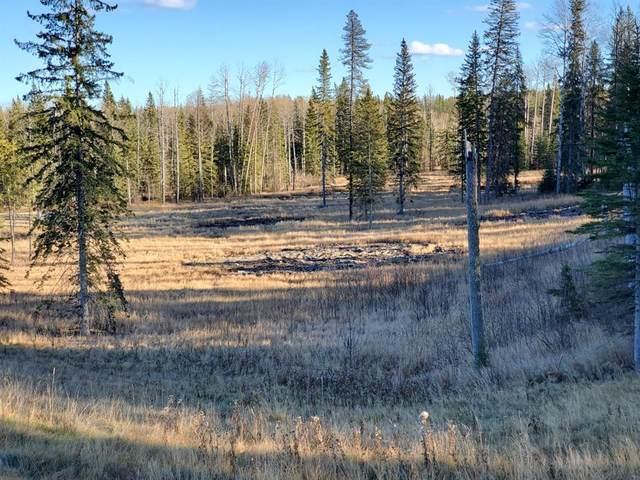 53201 170 Range #1, Rural Yellowhead, AB T7E 3E4 (#A1157583) :: Canmore & Banff