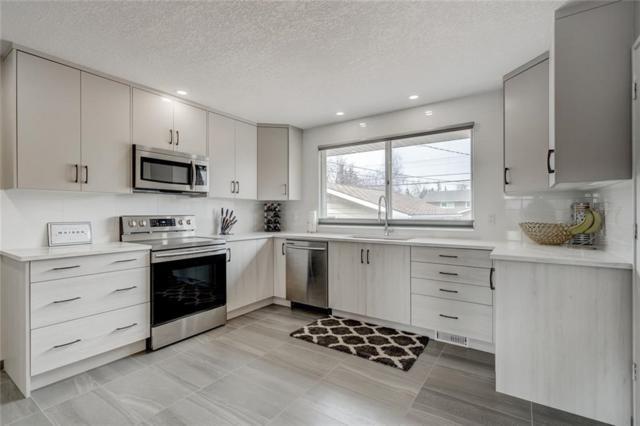156 Huntford Road NE, Calgary, AB T2K 3Y9 (#C4232403) :: Canmore & Banff