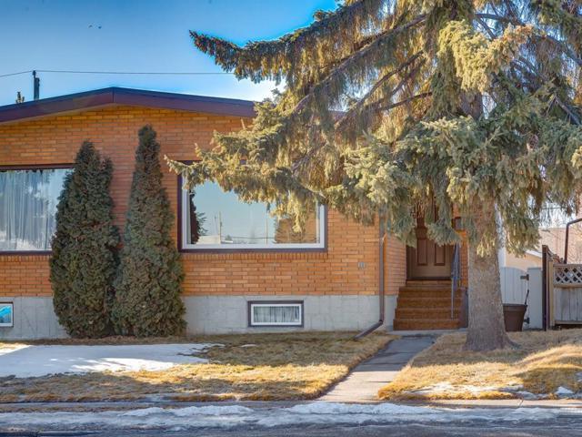 2129 50 Avenue SW, Calgary, AB T2T 2W5 (#C4235709) :: The Cliff Stevenson Group