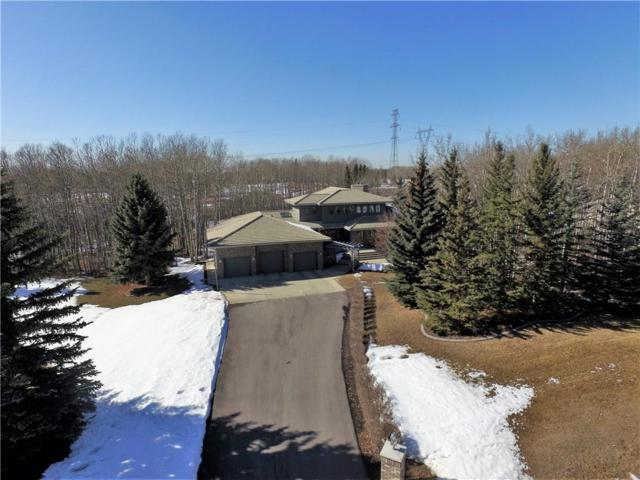 26 Bearspaw Ridge Crescent, Rural Rocky View County, AB T3R 1A3 (#C4236640) :: Calgary Homefinders