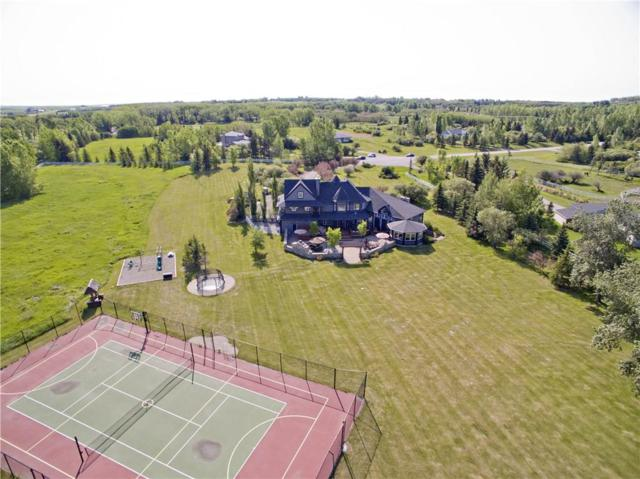 4 Willowside Place, Rural Foothills County, AB T1S 1A2 (#C4237147) :: The Cliff Stevenson Group