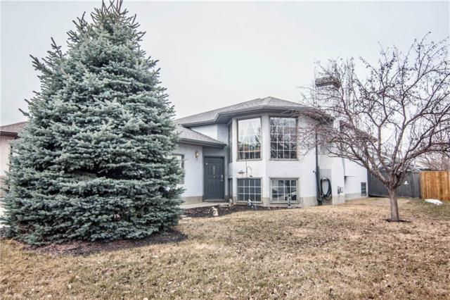 19 Sheep River Crescent, Okotoks, AB T1S 1N6 (#C4237827) :: Calgary Homefinders
