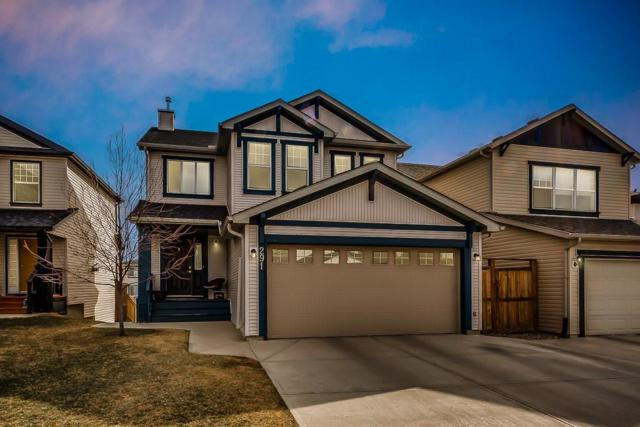 291 Sagewood Place SW, Airdrie, AB T4B 3M8 (#C4238072) :: Redline Real Estate Group Inc