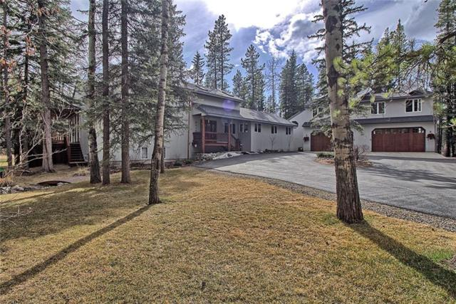 134 Hawk Eye Road, Bragg Creek, AB T0L 0K0 (#C4238167) :: The Cliff Stevenson Group