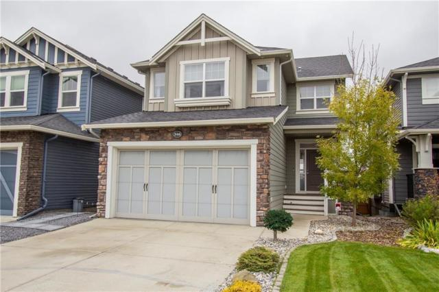 346 Williamstown Green NW, Airdrie, AB T4B 0T1 (#C4238303) :: Calgary Homefinders