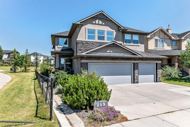 215 Crystal Shores Drive, Okotoks, AB T1S 2L1 (#C4238529) :: The Cliff Stevenson Group