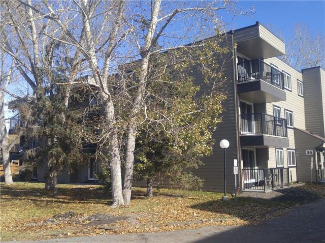 36 Glenbrook Crescent #206, Cochrane, AB T4C 1T2 (#C4238531) :: Redline Real Estate Group Inc