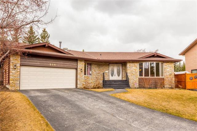 236 Pump Hill Gardens SW, Calgary, AB T2V 4M6 (#C4238686) :: Redline Real Estate Group Inc