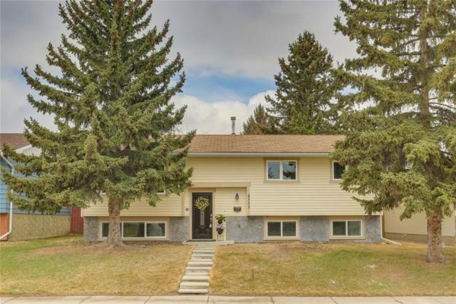 4303 45 Street SW, Calgary, AB T3E 3W2 (#C4238846) :: Redline Real Estate Group Inc