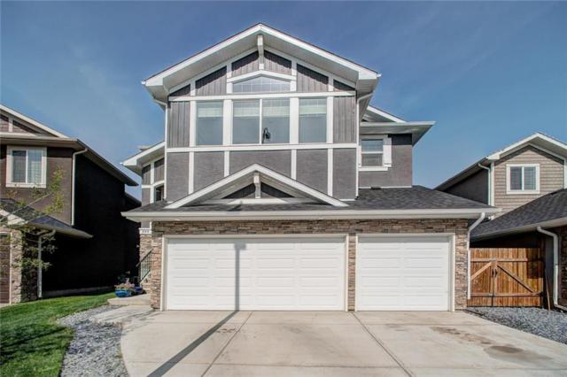 599 West Chestermere Drive, Chestermere, AB T1X 1B4 (#C4239120) :: The Cliff Stevenson Group