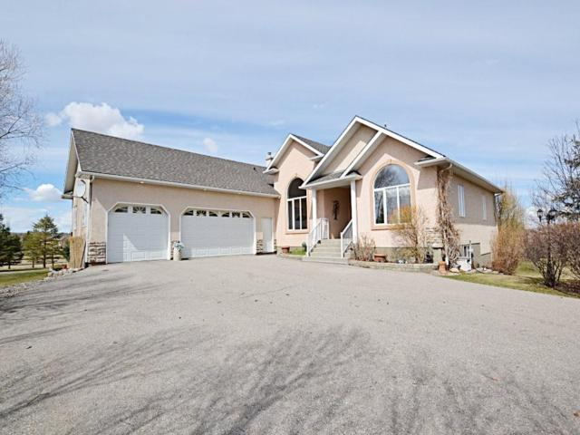 6 Norris Coulee Loop, Rural Foothills County, AB T1S 5A3 (#C4239248) :: The Cliff Stevenson Group