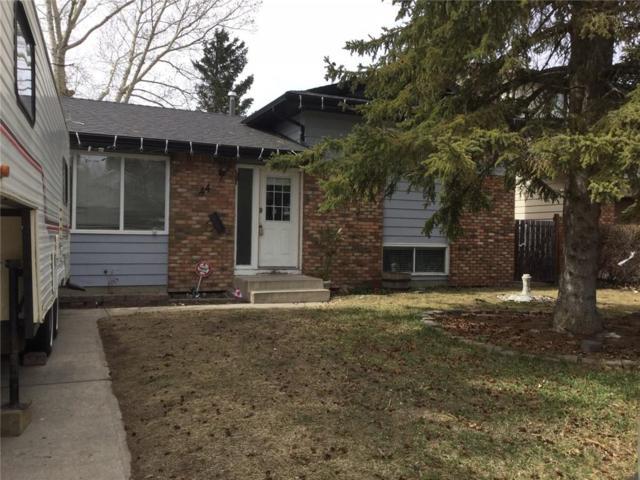 44 Jensen Crescent NE, Airdrie, AB T4B 1P1 (#C4239360) :: Calgary Homefinders