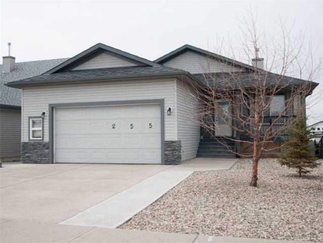 255 Hillcrest Boulevard, Strathmore, AB T1P 1W2 (#C4239373) :: Calgary Homefinders