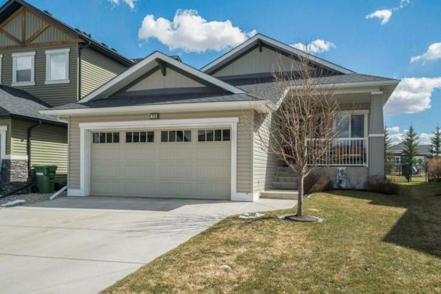 75 Ravenslea Crescent SE, Airdrie, AB T4A 0H3 (#C4239604) :: Calgary Homefinders