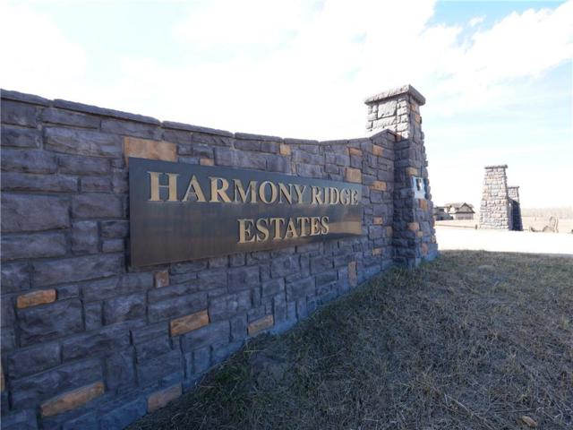 274164 Haven's Gate E, Rural Foothills County, AB T0L 0X0 (#C4239616) :: Calgary Homefinders