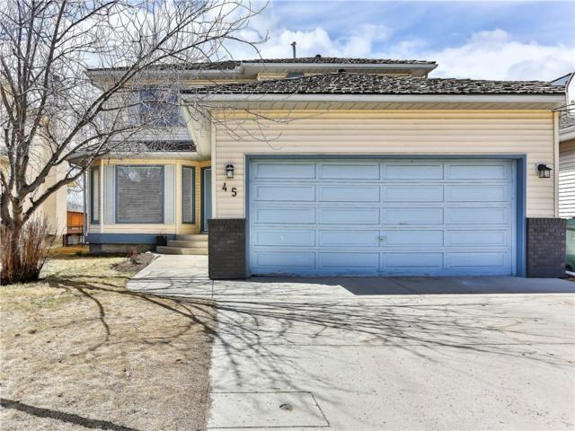 45 Douglasbank Way SE, Calgary, AB T2Z 1W7 (#C4239686) :: Calgary Homefinders
