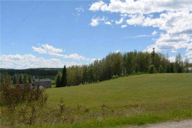 201 West Country Drive, Rural Clearwater County, AB T0M 0M0 (#C4240760) :: Redline Real Estate Group Inc