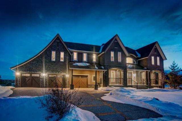 155 Leighton Lane, Rural Rocky View County, AB T3Z 0A2 (#C4240904) :: Redline Real Estate Group Inc