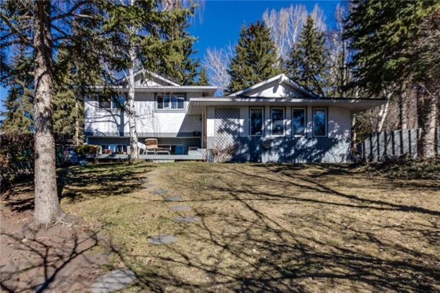 5116 Dalham Crescent NW, Calgary, AB T3A 1L7 (#C4241047) :: The Cliff Stevenson Group