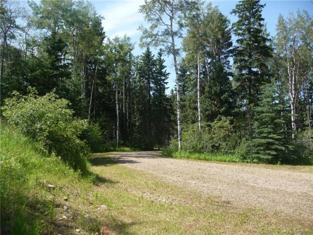 #3, Lot 1 Cranberry Drive, Rural Clearwater County, AB T0M 0M0 (#C4241493) :: Redline Real Estate Group Inc