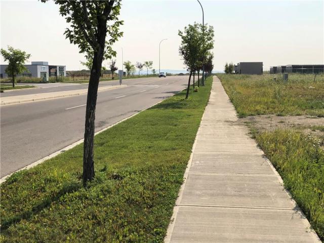 111 Southbank Blvd, Okotoks, AB T1S 0G1 (#C4241538) :: The Cliff Stevenson Group