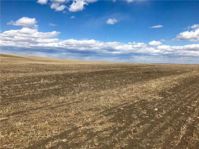 610034 Hwy 2, High River, AB T1S 1A5 (#C4241643) :: Western Elite Real Estate Group
