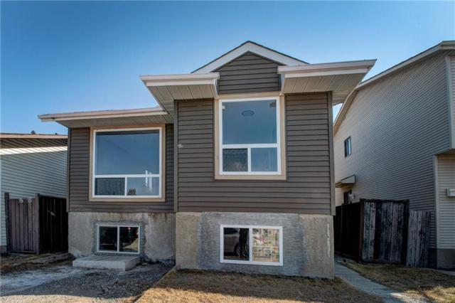 208 Castlegreen Close NE, Calgary, AB T3J 1Y6 (#C4241673) :: The Cliff Stevenson Group
