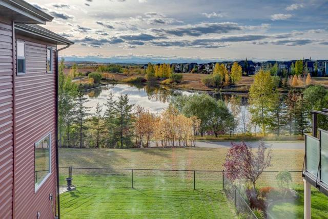148 Drake Landing Terrace, Okotoks, AB T1S 0H1 (#C4241704) :: Redline Real Estate Group Inc