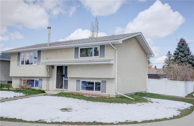 10203 Wapiti Drive SE, Calgary, AB T2J 1J3 (#C4242477) :: Redline Real Estate Group Inc