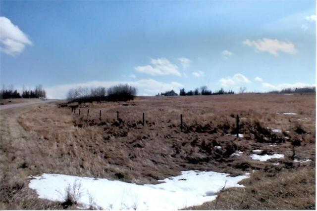 266095 1020 Drive E, Rural Foothills County, AB T1S 4S6 (#C4243547) :: The Cliff Stevenson Group