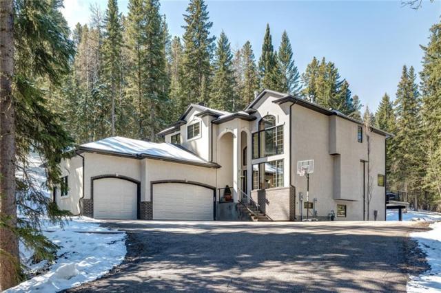 249 Mountain Lion Drive, Bragg Creek, AB T0L 0K0 (#C4243878) :: The Cliff Stevenson Group