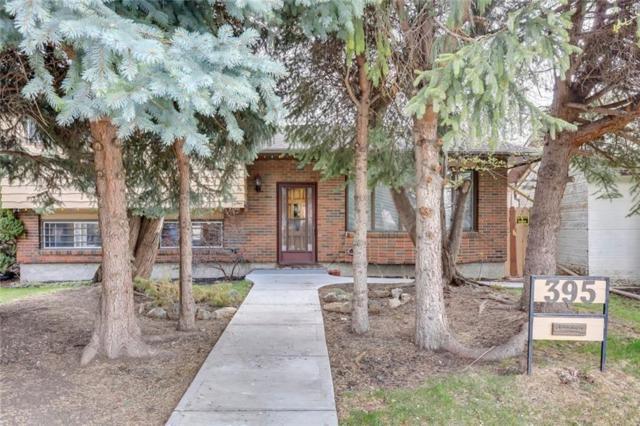 395 Whiteridge Crescent NE, Calgary, AB T1Y 2Y9 (#C4244237) :: Redline Real Estate Group Inc
