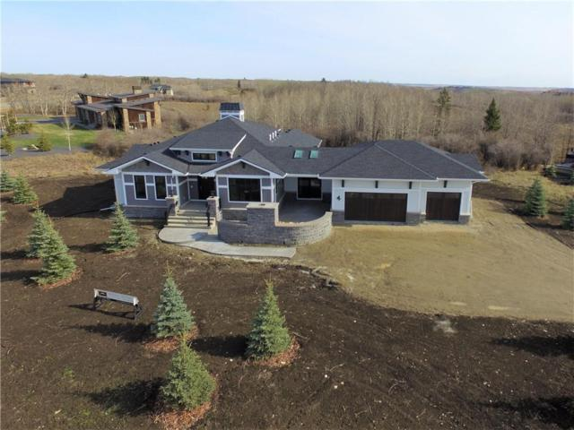 4 Silverhorn Ridge, Rural Rocky View County, AB T3R 0X3 (#C4244239) :: Redline Real Estate Group Inc