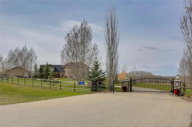 28 Shannon Loop, Rural Foothills County, AB T1S 5B3 (#C4244308) :: The Cliff Stevenson Group