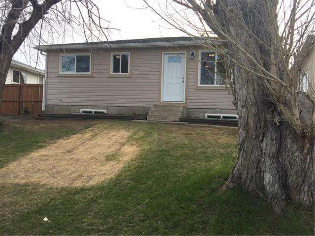 3323 Dovercliffe Road SE, Calgary, AB  (#C4244471) :: Redline Real Estate Group Inc