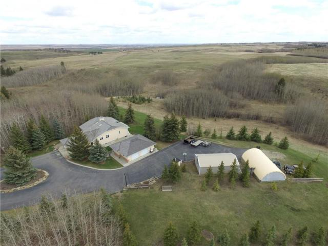 25203 Bearspaw Place, Rural Rocky View County, AB T3R 1H5 (#C4244484) :: Redline Real Estate Group Inc