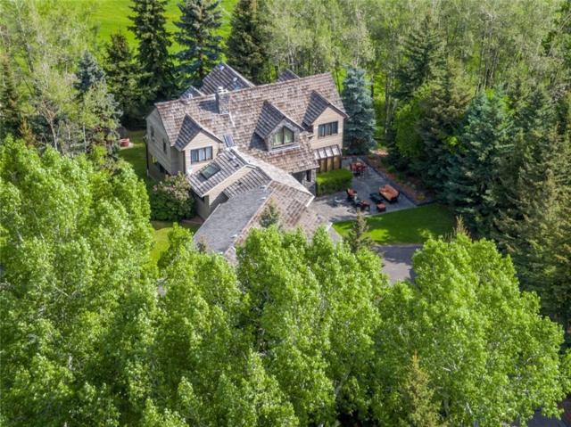31082 Elbow River Drive, Rural Rocky View County, AB T3Z 2T8 (#C4244570) :: Virtu Real Estate