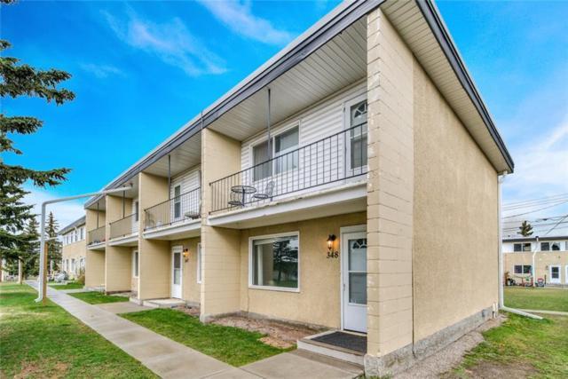 2211 19 Street NE #348, Calgary, AB T2E 4Y5 (#C4244613) :: The Cliff Stevenson Group