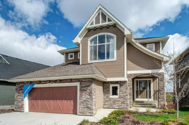 1339 Bayside Drive SW, Airdrie, AB T4B 3W8 (#C4244666) :: Canmore & Banff