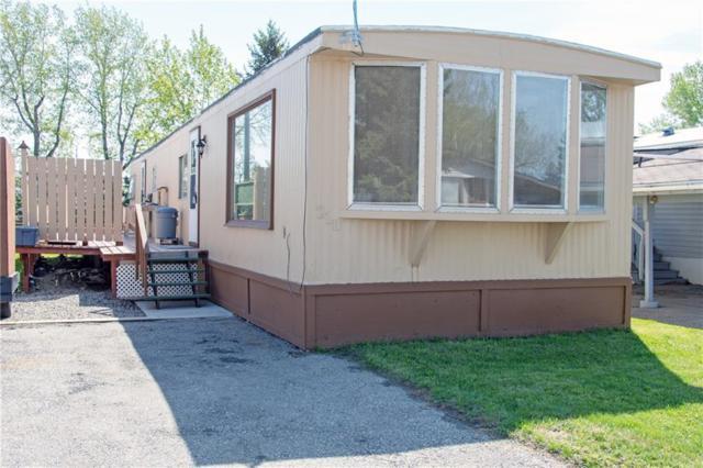210 Polar Avenue, High River, AB T1V 1J4 (#C4244704) :: Redline Real Estate Group Inc