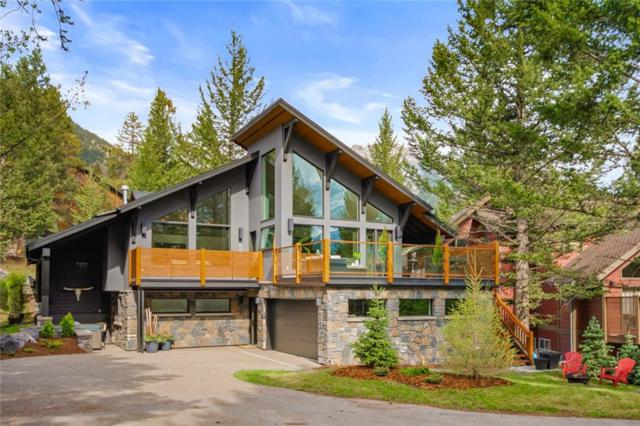 15 Blue Grouse Ridge, Canmore, AB T1W 1L5 (#C4244821) :: Calgary Homefinders