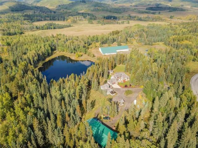 18 Aspen Creek Drive, Rural Foothills County, AB T0L 0K0 (#C4245002) :: The Cliff Stevenson Group