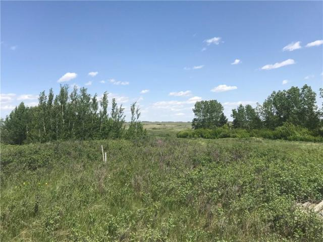 Lot 2 Big Hill Springs Meadow, Rural Rocky View County, AB T4C 0E5 (#C4245168) :: The Cliff Stevenson Group