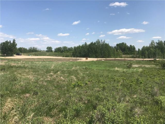 Lot 4 Big Hill Springs Meadow, Rural Rocky View County, AB T4C 0E5 (#C4245172) :: The Cliff Stevenson Group