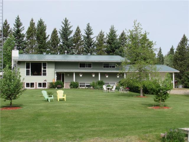 36074 Range Road 42, Spruce View, AB T4G 0L5 (#C4245325) :: The Cliff Stevenson Group