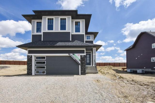 52 Carringvue Street NE, Calgary, AB T3P 1L7 (#C4245372) :: Redline Real Estate Group Inc