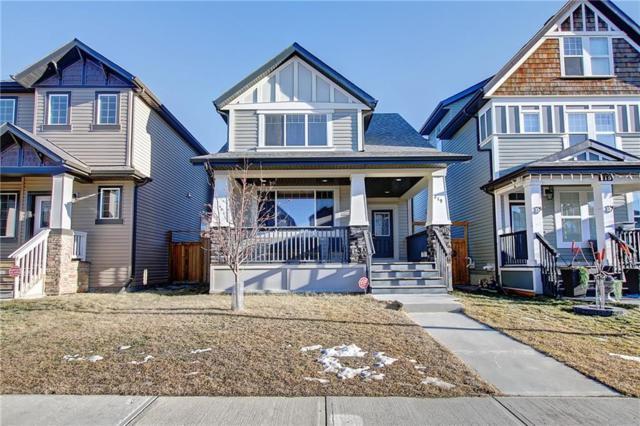219 Skyview Point Road NE, Calgary, AB T3N 0K6 (#C4245435) :: Redline Real Estate Group Inc
