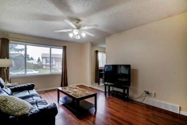 28 Falchurch Crescent NE, Calgary, AB T3J 1K1 (#C4245486) :: Redline Real Estate Group Inc