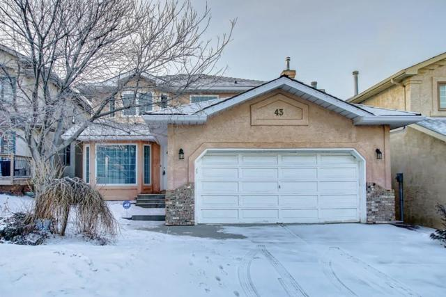 43 Douglas Woods Terrace SE, Calgary, AB T2Z 2E5 (#C4245487) :: Redline Real Estate Group Inc